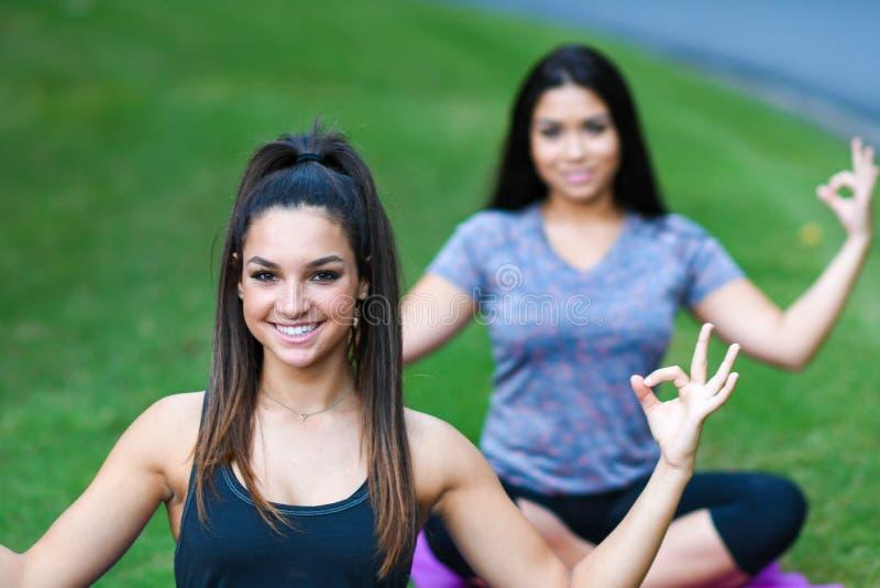 Download Séance D'entraînement De Forme Physique De Groupe Image stock - Image du fitness, pose: 77154997