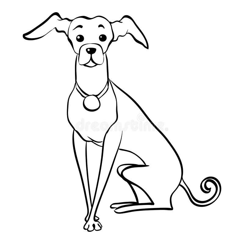 Séance drôle de chien de lévrier italien de croquis de vecteur illustration de vecteur