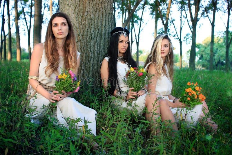 Séance photo de matin dans la forêt avec trois femmes païennes image libre de droits