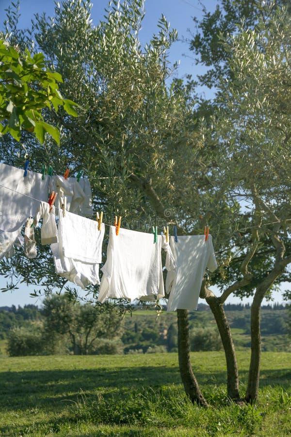 Séchage de blanchisserie sur une corde à linge photographie stock