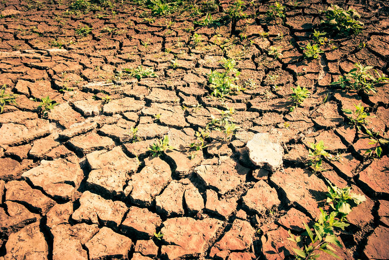 sécheresse photos stock