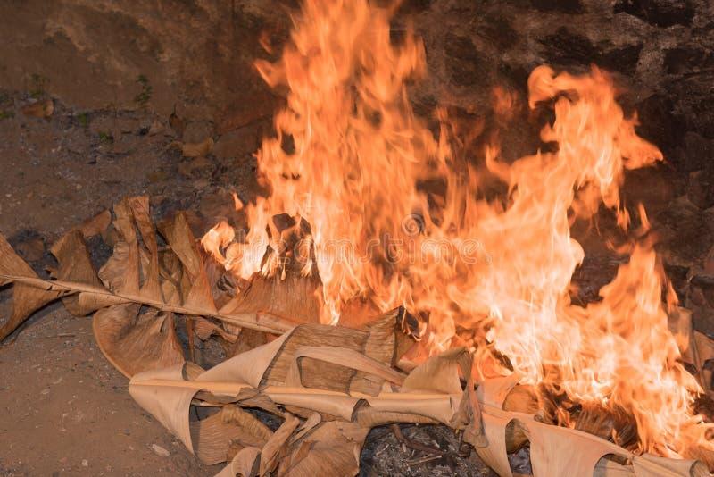 Séchez les feuilles brûlant avec les flammes jaunes rouges images libres de droits