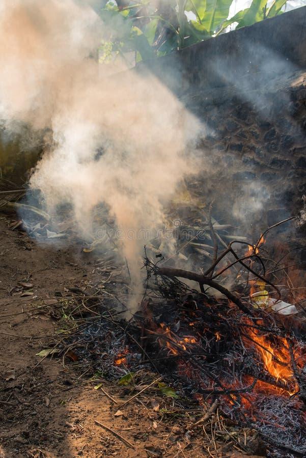Séchez les feuilles brûlant avec les flammes jaunes rouges image libre de droits