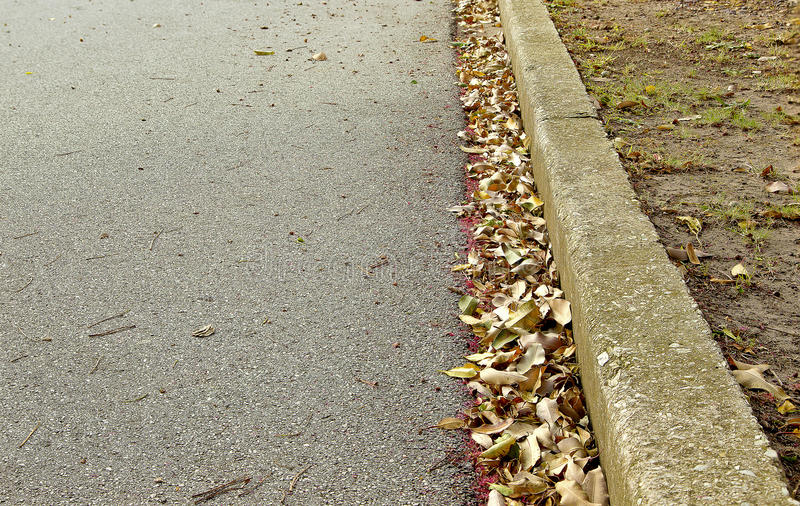 Séchez les feuilles dans une gouttière de route photos stock