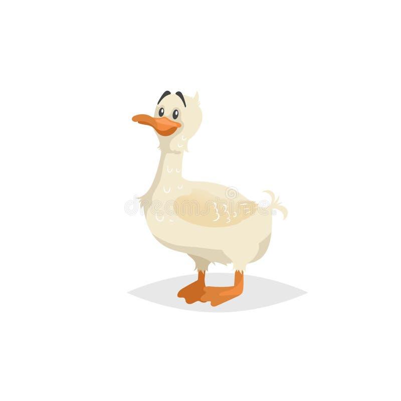 Séjour blanc mignon de canard Caractère drôle de caneton de bande dessinée Illustration d'animal de ferme pour l'éducation d'enfa illustration stock