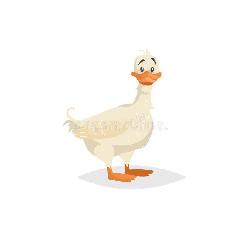 Séjour blanc mignon de canard Caractère drôle de caneton de bande dessinée Illustration d'animal de ferme pour l'éducation d'enfa illustration de vecteur