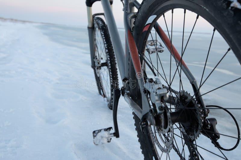 Séjour de vélo de montagne dans la neige près de la mer ou du lac congelée Machiniste de roue arrière et petit groupe de coupures photos libres de droits