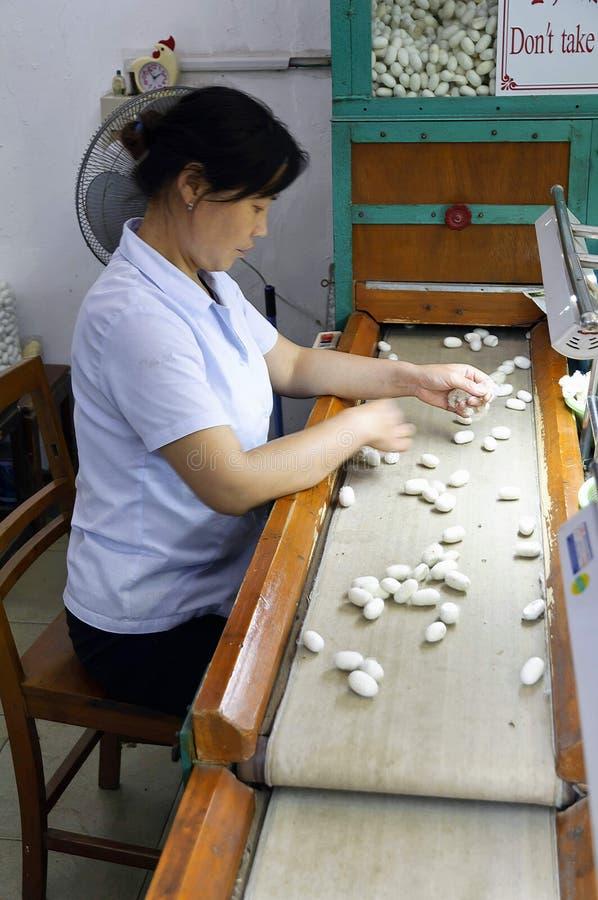 Sélection de cocon à Suzhou non 1 moulin en soie, Chine photographie stock