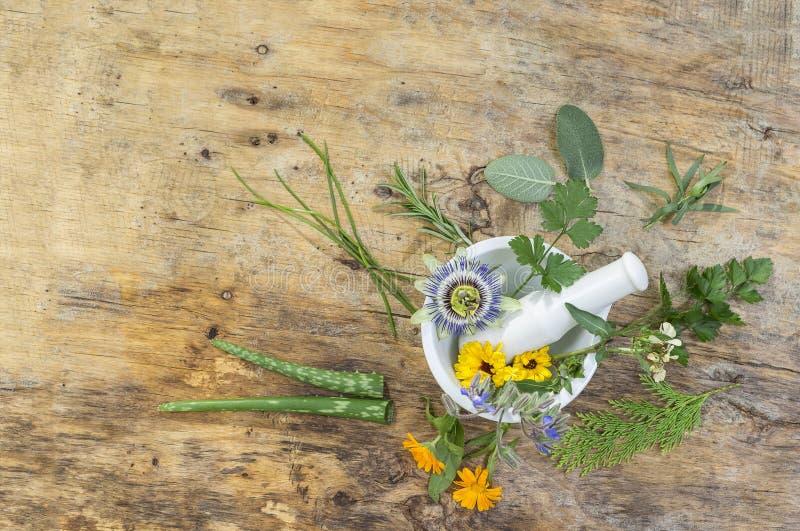 Sélection de feuille d'herbe de thym d'or, d'origan, de sauge pourpre, de menthe et de romarin en fleur dans un mortier en bois o image libre de droits