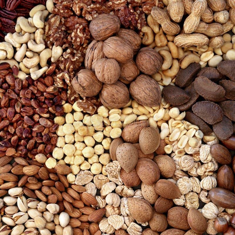 Sélection de noix sèches en bonne santé à haute teneur en protéines photos stock