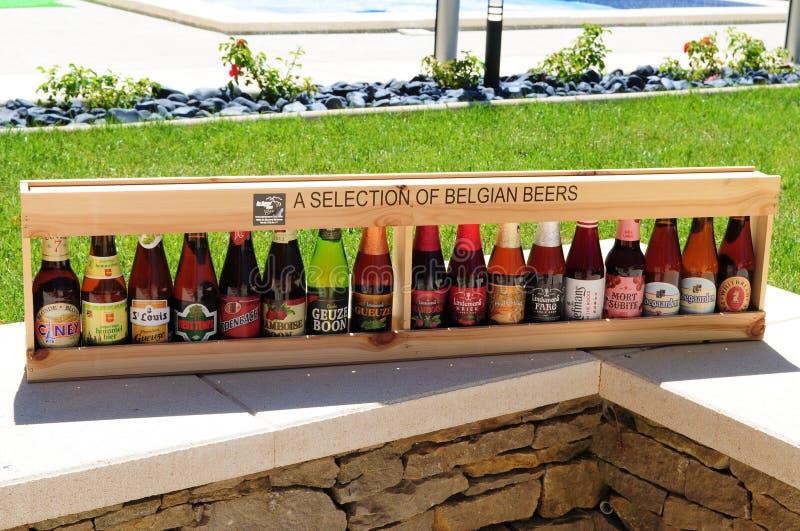 Sélection des bières belges photographie stock libre de droits