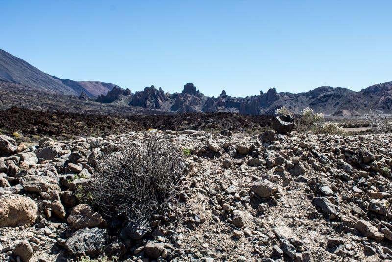 Sélection du volcan de Teide dans Ténérife photo libre de droits