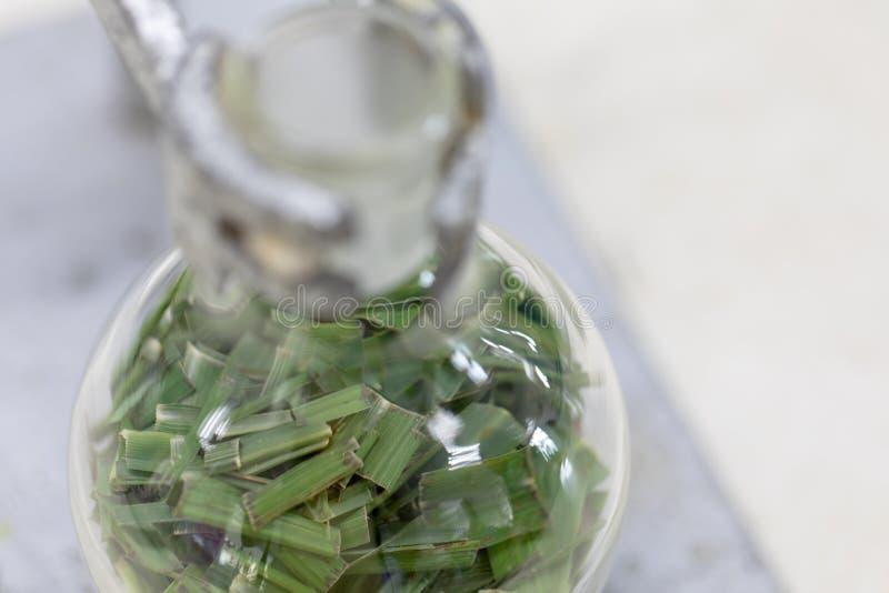 Séparation par condensation de filtration et d'évaporation les substances composantes du mélange liquide dans le laboratoire image libre de droits