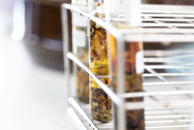 Séparation par condensation de filtration et d'évaporation les substances composantes du mélange liquide dans le laboratoire images stock