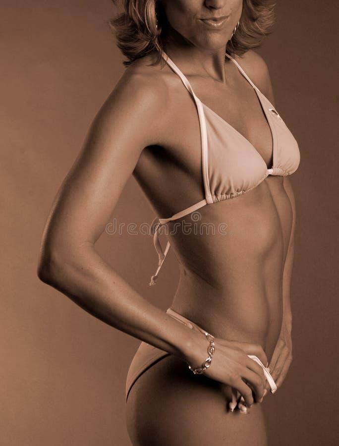 Download Sépia de fuselage femelle image stock. Image du bikini - 731565