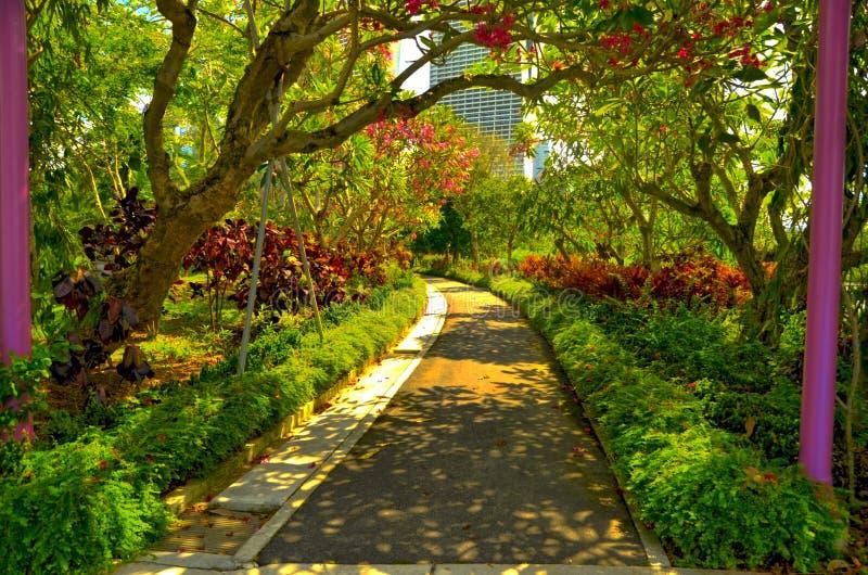 Sérénité tropicale de jardin images libres de droits