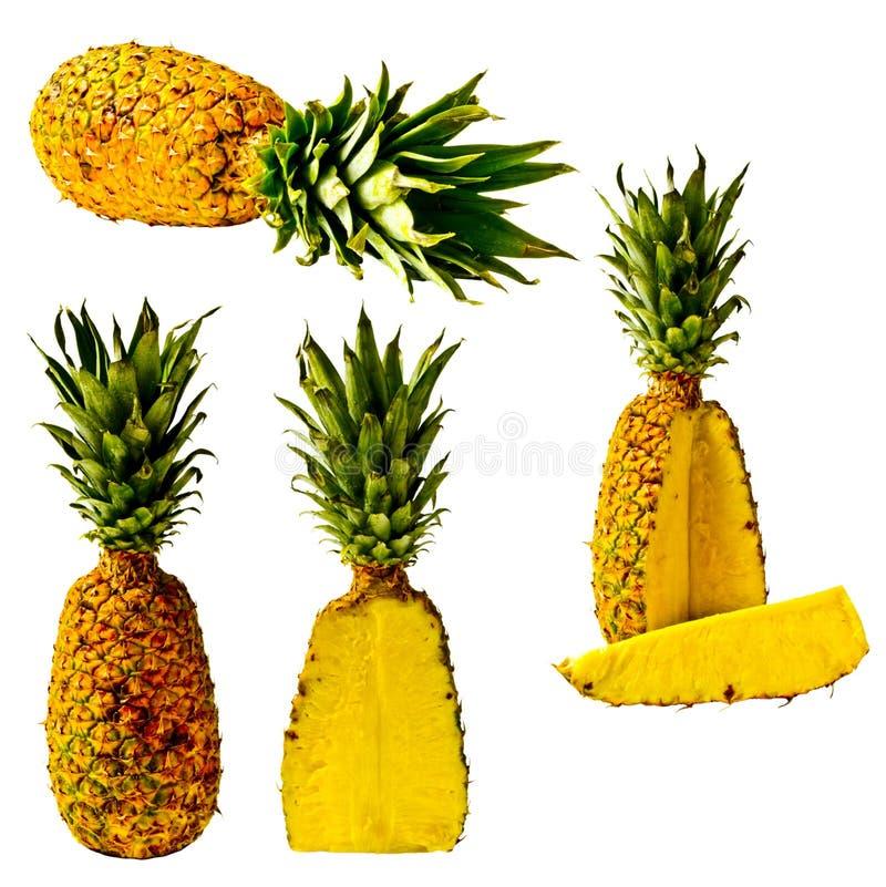 Série d'isolement d'ananas photos stock