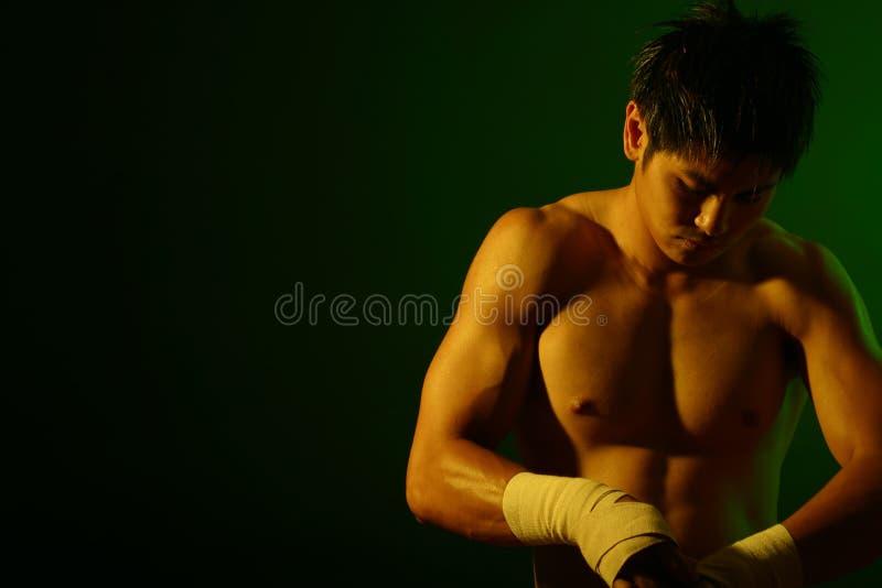 Série De Boxeur Image libre de droits