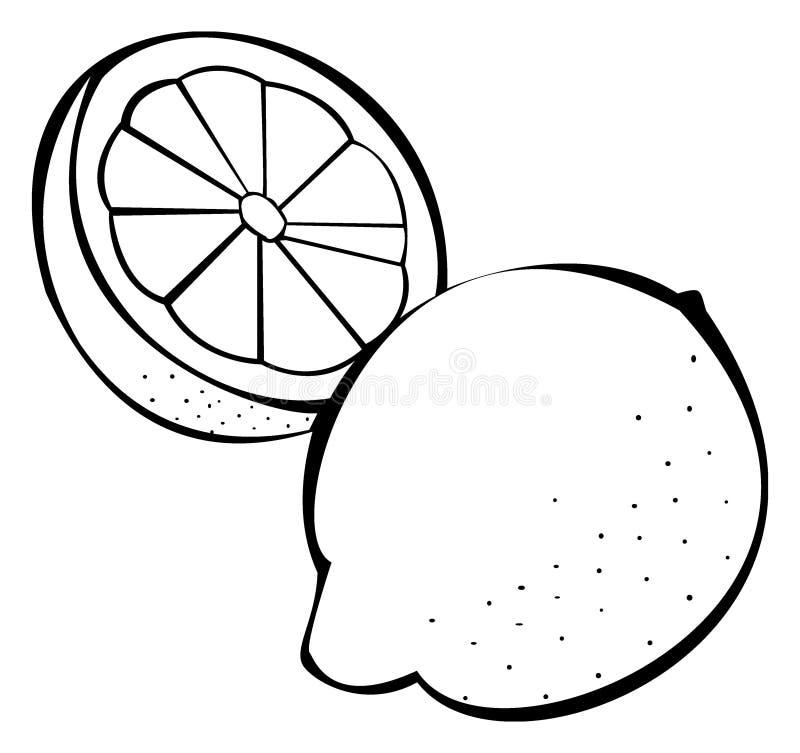 Série de légumes : citrons illustration libre de droits