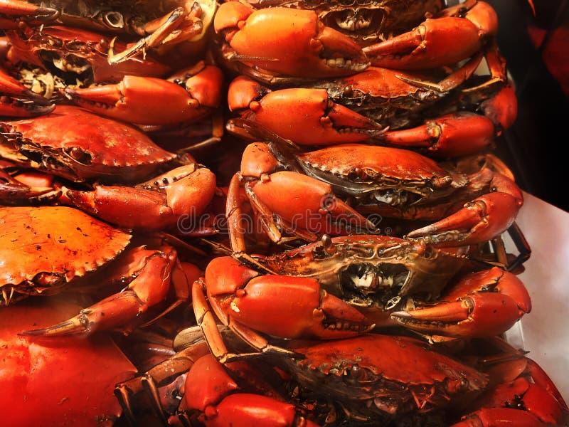 Série do marisco do BBQ imagens de stock