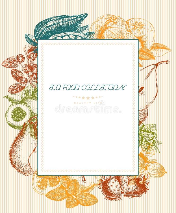 Série - fruto, vegetais e especiarias do vetor Menu do alimento biológico Grupo de vegetais, de frutos e de especiarias esboço ilustração stock