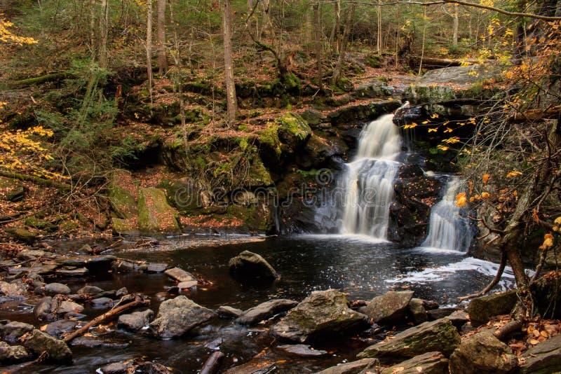 A série inferior de Enders cai na floresta do estado de Enders imagem de stock royalty free