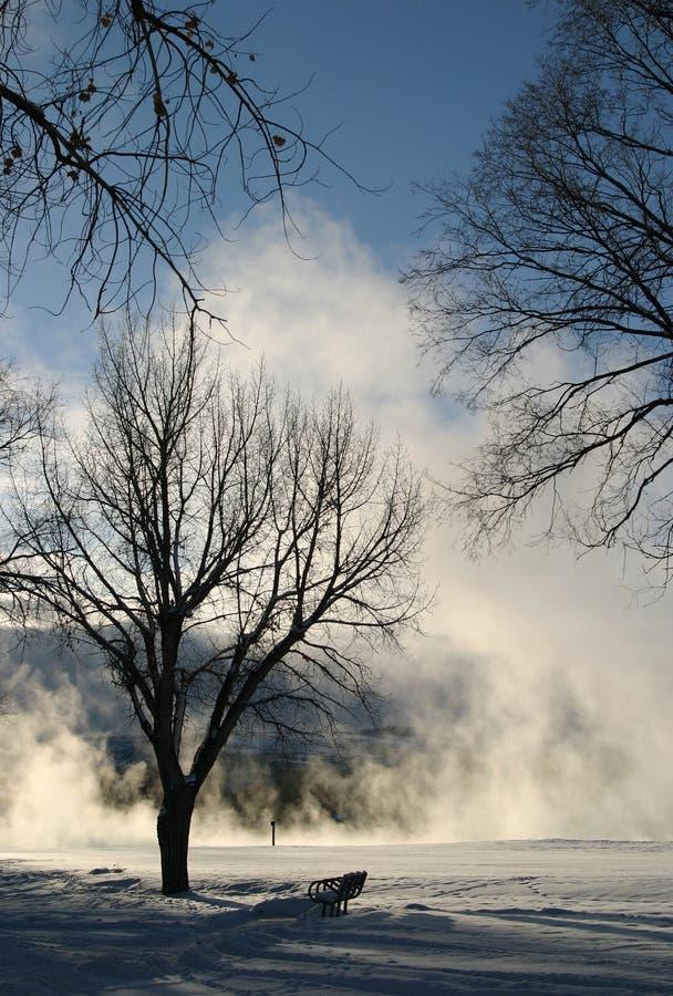 Série rêveuse 6 de l'hiver images libres de droits