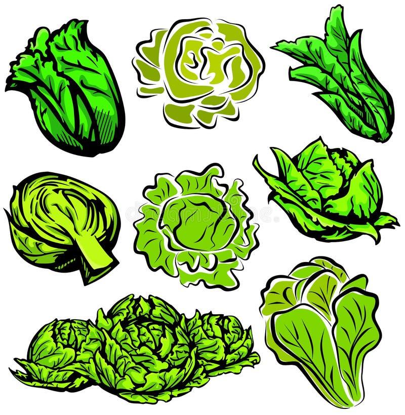 Série végétale d'illustration illustration libre de droits