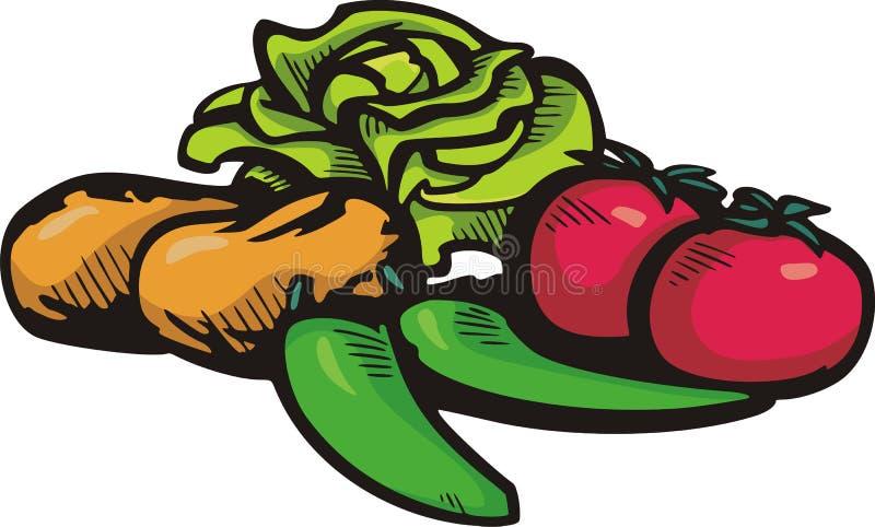 Série vegetal da ilustração ilustração do vetor