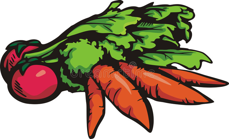 Série vegetal da ilustração ilustração stock