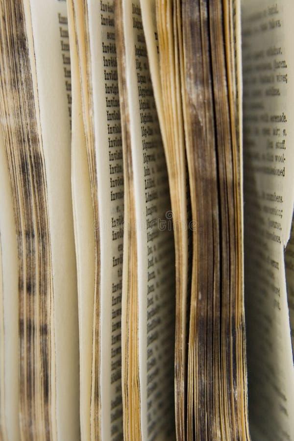 Série velha do dicionário imagem de stock royalty free
