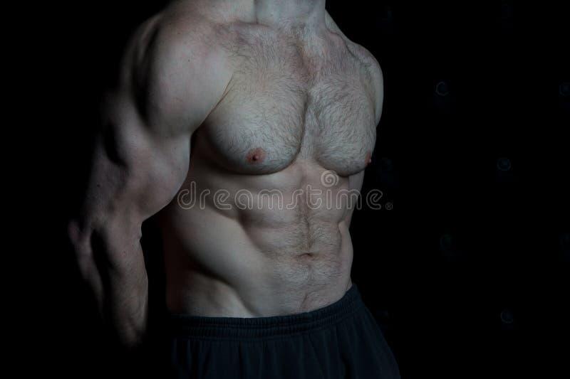 Sério sobre ficar na forma O torso com seis blocos olha atrativo no fundo preto Músculos enormes do torso muscular fotos de stock royalty free