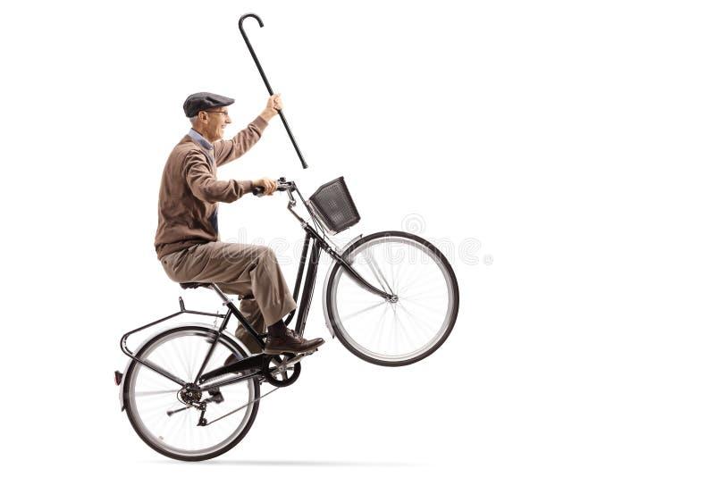 Sênior alegre com um bastão que monta uma bicicleta e que faz um wheelie imagem de stock royalty free