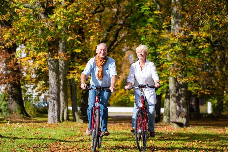 Sêniores nas bicicletas que têm a excursão no parque imagens de stock royalty free