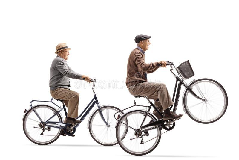 Sêniores que montam bicicletas com um delas que fazem um wheelie fotografia de stock