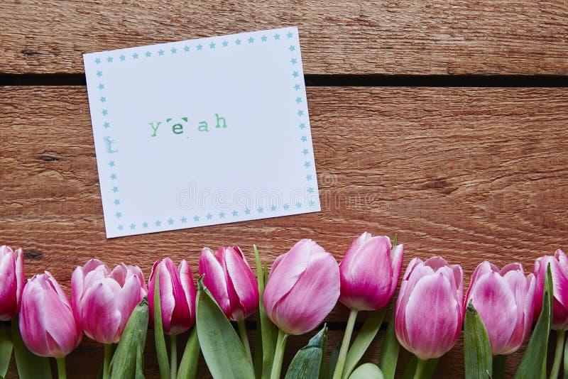 Sí tulipanes del mensaje de la primavera en la madera foto de archivo libre de regalías