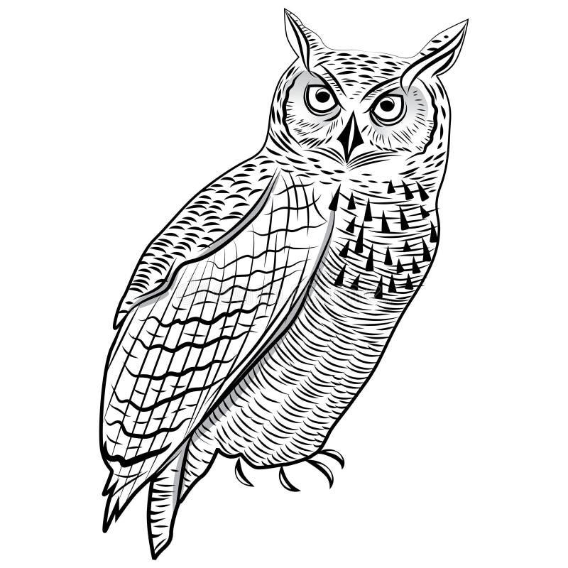 Símbolo da cabeça do pássaro da coruja para o projeto da mascote ou do emblema, ilustração do vetor do logotipo para o projeto da ilustração do vetor