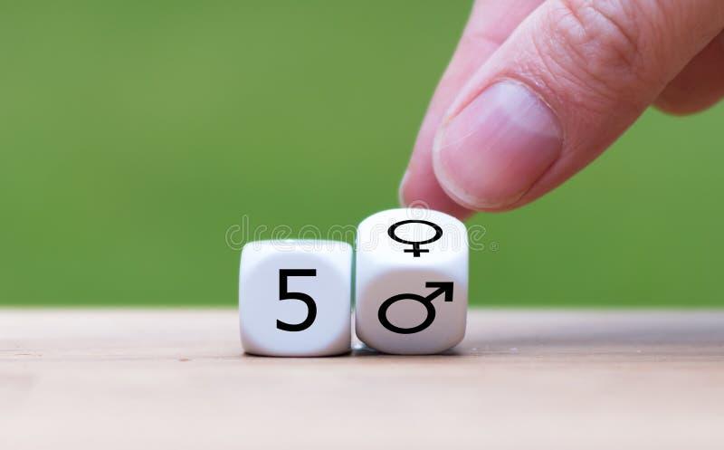 Símbolo da igualdade de gênero foto de stock royalty free