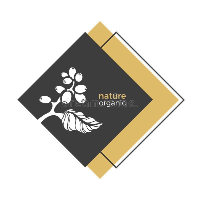 Símbolo da natureza do vetor da árvore de café ilustração stock