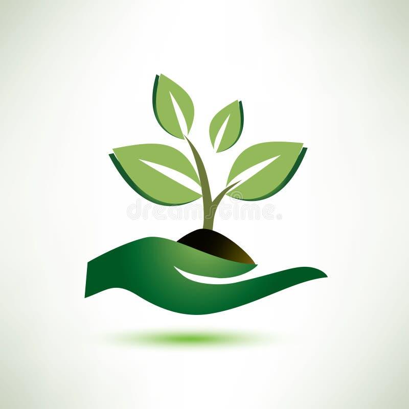 Símbolo da palma e da planta ilustração royalty free