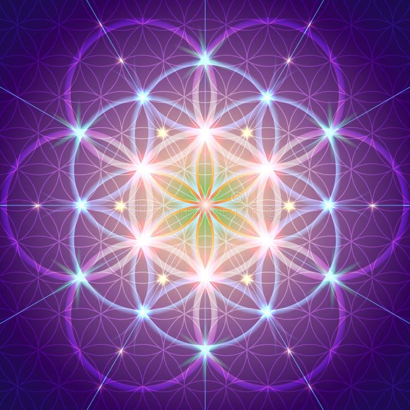 Símbolo de la geometría sagrada ilustración del vector