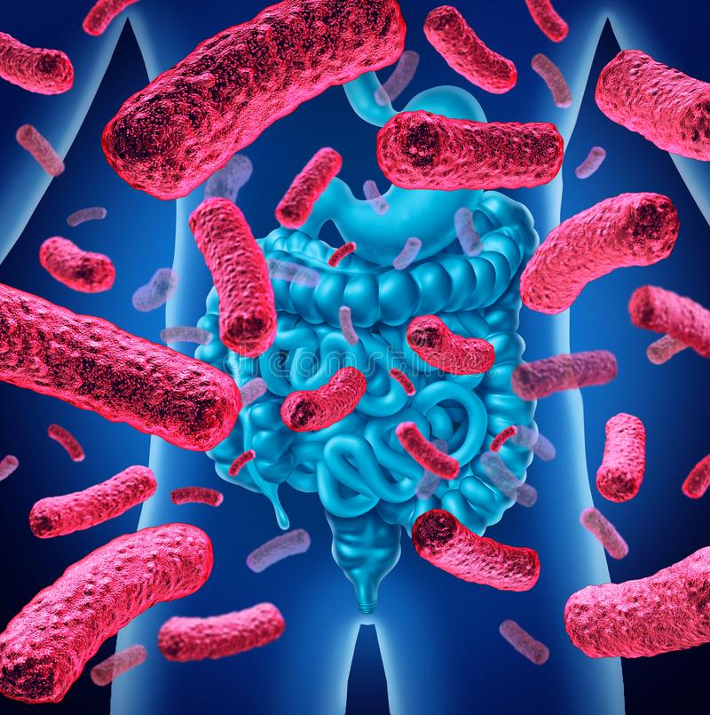 Símbolo de la salud de las bacterias del intestino stock de ilustración