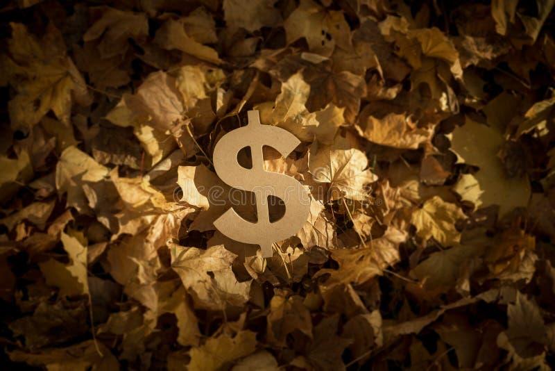Símbolo de moneda del dólar en Autumn Leaves por la última tarde Sun foto de archivo