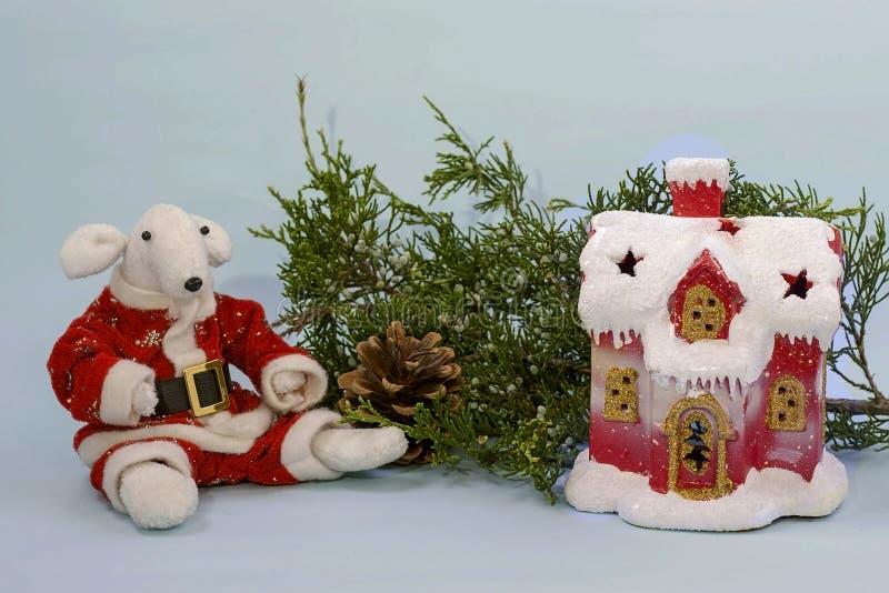 Símbolo de 2020 no calendário oriental Rato branco bonito em um traje vermelho de Santa Claus perto do ramo do zimbro e e da fotos de stock royalty free