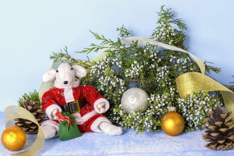 Símbolo de 2020 no calendário oriental Rato branco em um traje vermelho de Santa Claus perto do ramo do zimbro e dourado bonitos fotografia de stock royalty free