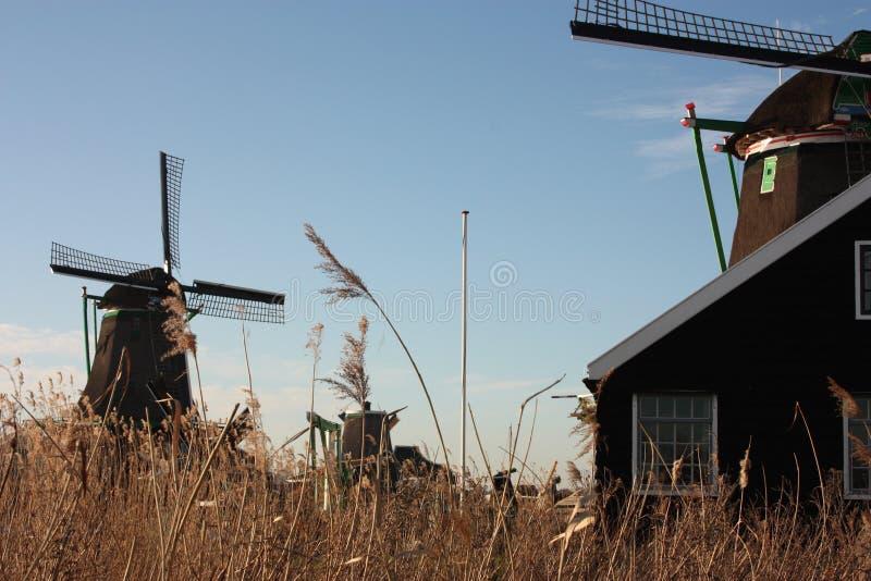 Símbolo de uma tradição agora perdida, agora uma mera atração turística os moinhos de vento coloridos construíram da madeira aind fotos de stock royalty free
