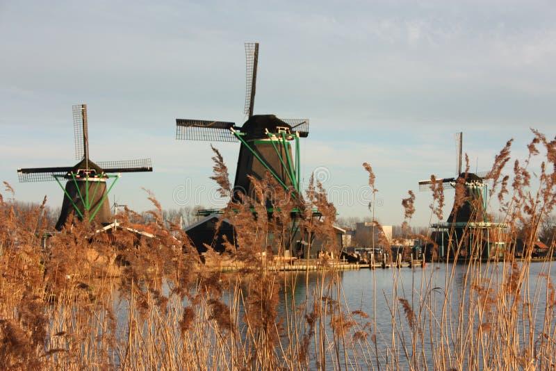 Símbolo de una tradición ahora perdida, ahora una simple atracción turística los molinoes de viento coloridos construyeron de la  imagenes de archivo