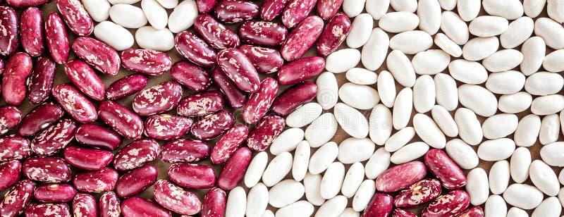 Símbolo de Yin Yan do branco vermelho do haricot dos feijões da grão no papel imagem de stock royalty free