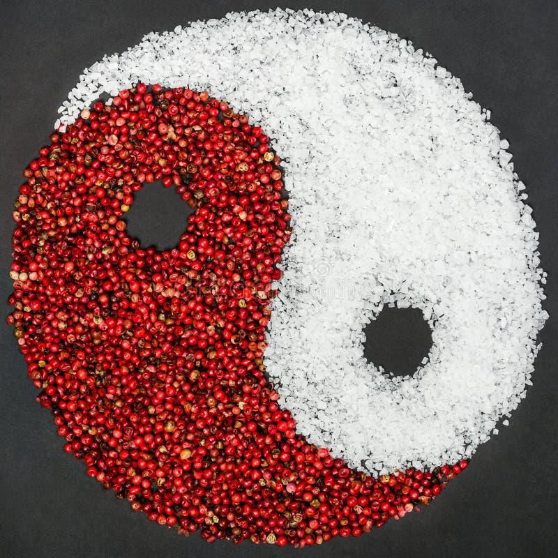 Símbolo de Yin Yang feito da pimenta vermelha e do sal fotografia de stock