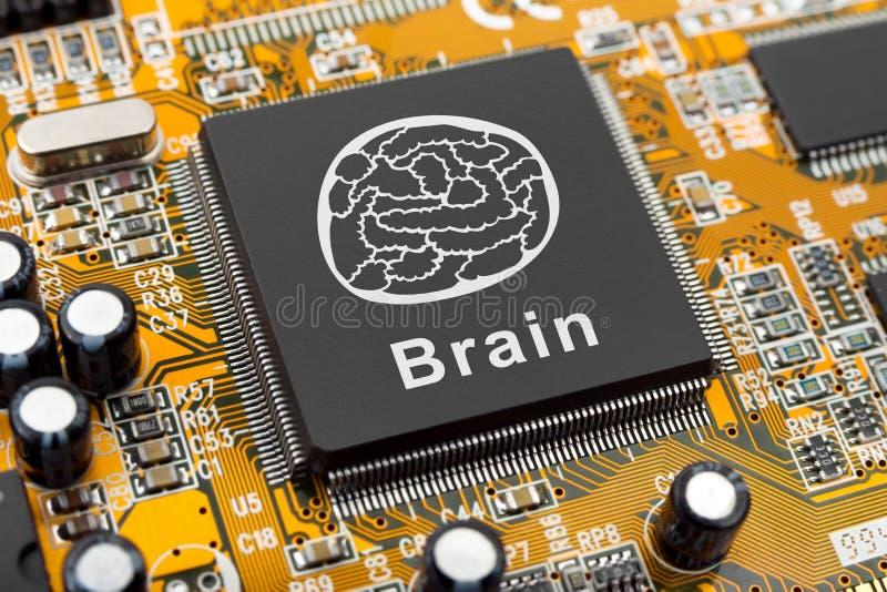 Símbolo del cerebro en el chip de ordenador imágenes de archivo libres de regalías